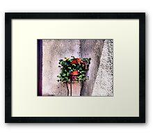 The Corner Flower Pot Framed Print