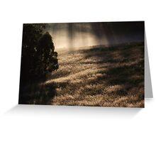 "'Morning Grass"" Greeting Card"