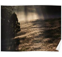 "'Morning Grass"" Poster"