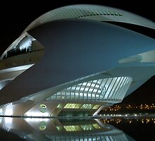 Palau De Les Arts - CAC - at night by Valfoto