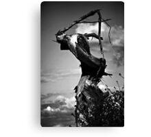 The Grim Reaper Tree Canvas Print