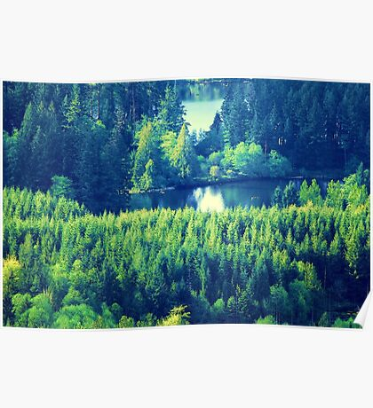 Lake Kapowsin Poster
