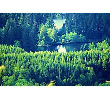 Lake Kapowsin Photographic Print