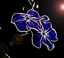 ~ Space Flowers ~ by Brenda Boisvert