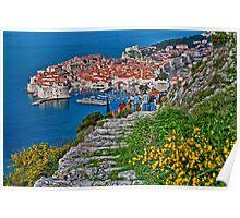 Looking at Dubrovnik Poster