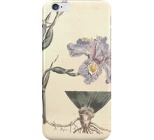 The Botanical magazine, or, Flower garden displayed by William Curtis V11 V12 1797 1798 0030 Iris Chinensis Chinese Iris iPhone Case/Skin