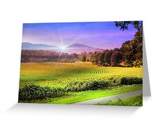 Biltmore Sunflower Field Greeting Card