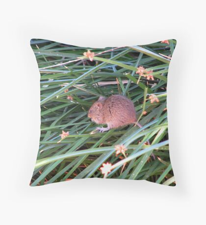 """Tiptoeing"" Throw Pillow"