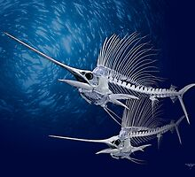 Sailfish by helterskeletons