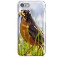 bird species iPhone Case/Skin