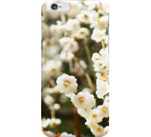 White plum blossoms iPhone Case/Skin