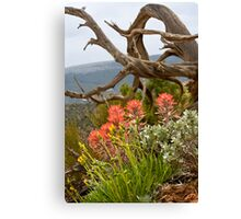 Paintbrush Framed Naturally Canvas Print