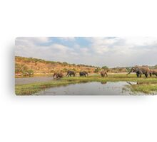Elephants crossing the Chobe River Canvas Print
