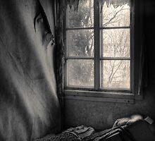 12.5.2010: Darker Spring Day by Petri Volanen
