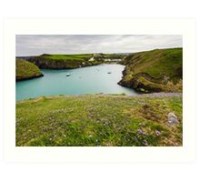 Abercastle Harbour in Spring, Pembrokeshire, Wales. UK Art Print