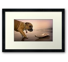 Subject Stolen Framed Print