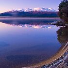 Frosty morning at Lake Otamangakau by Paul Mercer