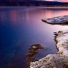 Frosty morning at Lake Otamangakau 2 by Paul Mercer