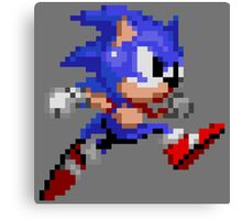 SONIC DASH! Canvas Print