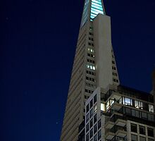 San Francisco Landmark at Night by Tommy Bombon