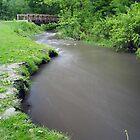 Upstream by Richard Williams