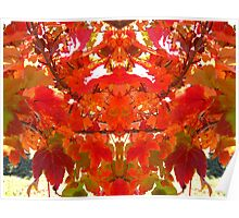 Red leaves. Poster