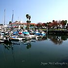 The Santa Barbara Harbor by Inga McCullough