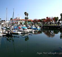 The Santa Barbara Harbor by Inga McCullough
