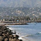 Santa Barbara Coast by Inga McCullough