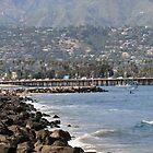 Santa Barbara Coast by Inga McCullough