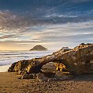 Back Beach Panorama by Dean Mullin