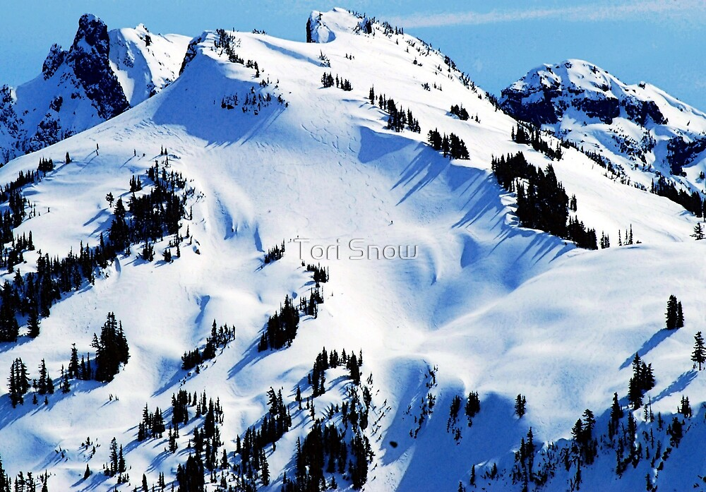 Back Country Downhill Skiers by Tori Snow