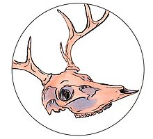 Deer Skull  by arobinart