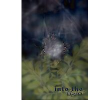 INTO THE LIGHT © and Beyond Photographic Print