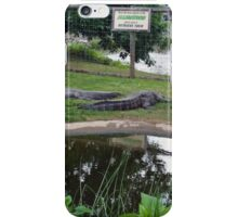 Alligator Guidelines iPhone Case/Skin