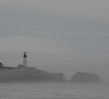 Yaquina above the fog by fototaker