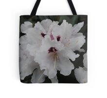 A flower's appeal is in its contradictions - so delicate in form yet strong in fragrance, so small in size yet big in beauty, so short in life yet long on effect.   Tote Bag