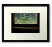 Frosted Window, Stranded Plant Framed Print
