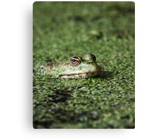 Swamp Goblin Canvas Print