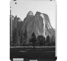 Meadow View, Yosemite iPad Case/Skin