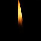 Candle Light 2 by Reza G Hassani