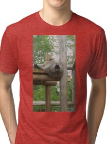 A baboon's point of view Tri-blend T-Shirt