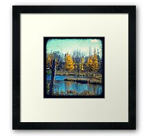 Wetlands Through The Viewfinder Framed Print