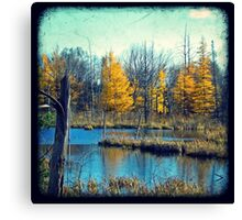 Wetlands Through The Viewfinder Canvas Print
