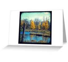 Wetlands Through The Viewfinder Greeting Card