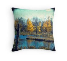 Wetlands Through The Viewfinder Throw Pillow