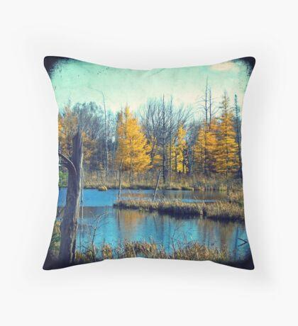 Wetlands Through The Viewfinder Throw Pillow