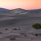 Death Valley, Mesquite Sunset by MattGranz