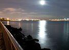 Moon Light over Brooklyn by Svetlana Sewell