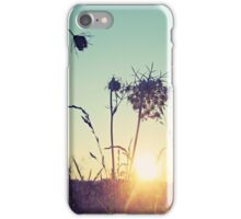 Sunset Over the Hay Fields iPhone Case/Skin